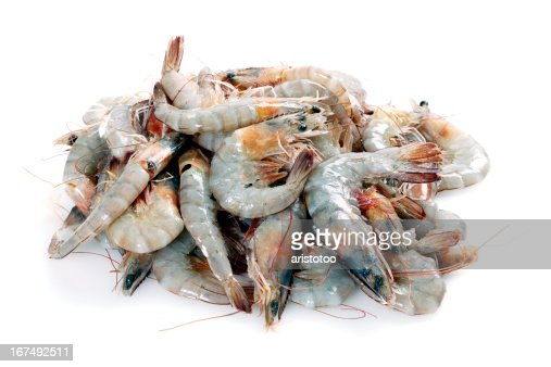 White Tiger Shrimps