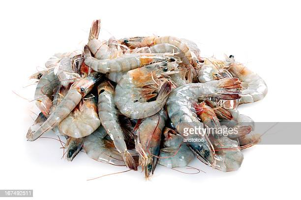Isolated Heap of White Tiger Shrimp