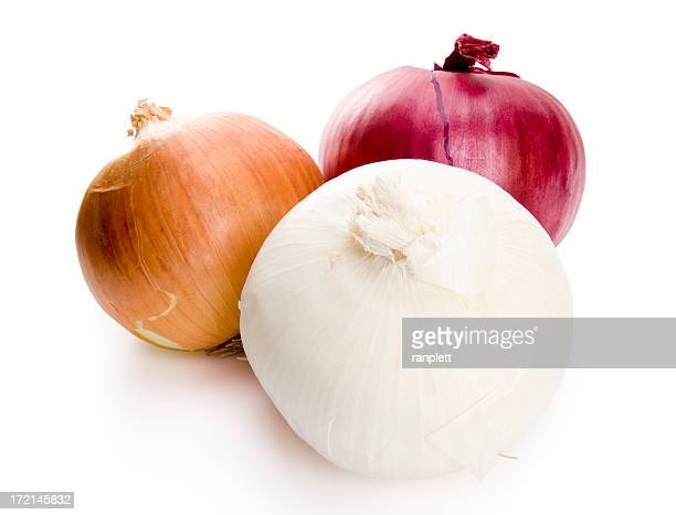 isolated onions - onion stock pictures, royalty-free photos & images