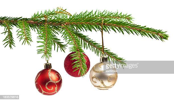 Isolated pine tree branch with three Christmas balls hanging