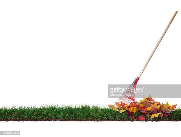 isolated rake and leaves on a strip of grass - rake stock pictures, royalty-free photos & images