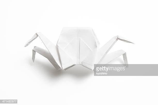 Isolated shot of blank origami crab on white background