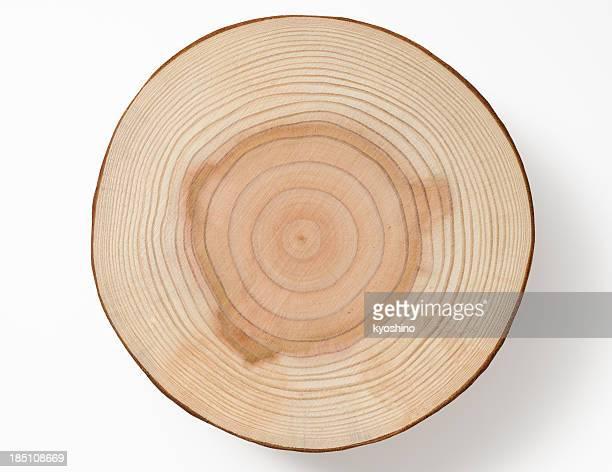 Toma de árbol aislado sobre fondo blanco de la sección transversal