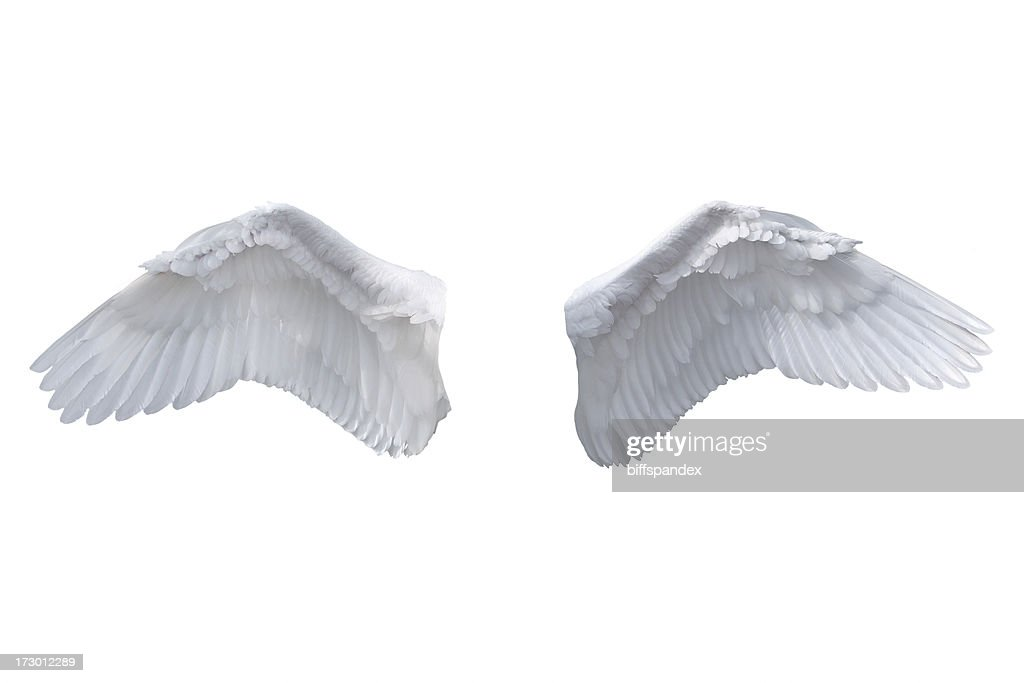 Isolated White Angel Wings : Stock Photo