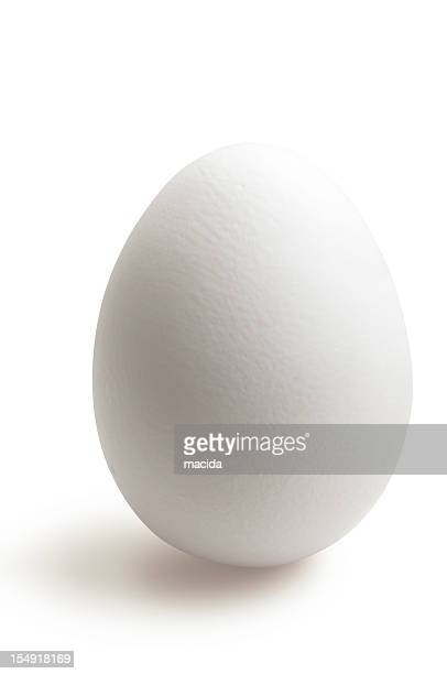 isolated white egg in white background - egg stock pictures, royalty-free photos & images