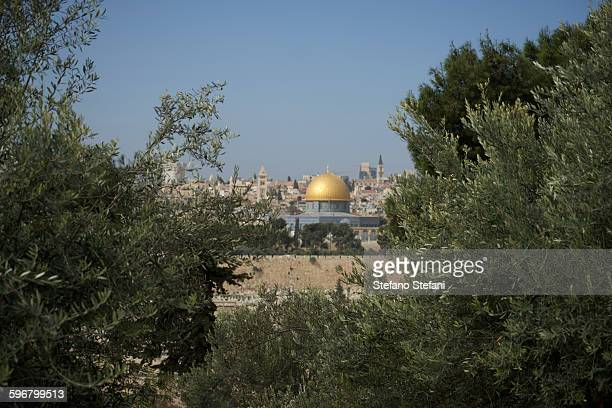 israel, jerusalem from the mount of olives - mount of olives stock photos and pictures