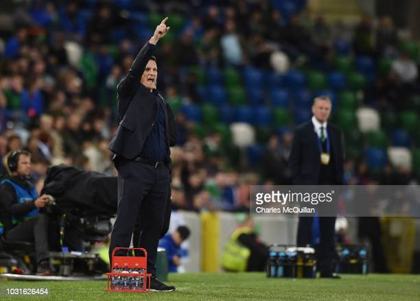 Israel manager Andi Herzog gives instructions during the international friendly football match between Northern Ireland and Israel at Windsor Park on...