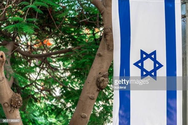 israel national flag in public park - israel flag stock pictures, royalty-free photos & images