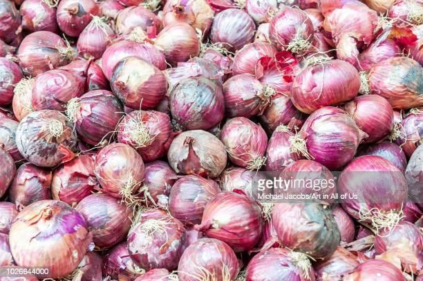 Israel, Tel Aviv-Yafo - 13 July 2018: Red onions sold at shuk hacarmel market