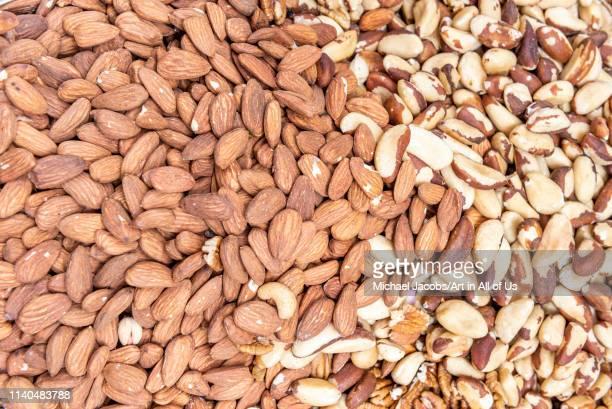 Shuk hacarmel market bulk nuts almonds walnuts and brazil nuts