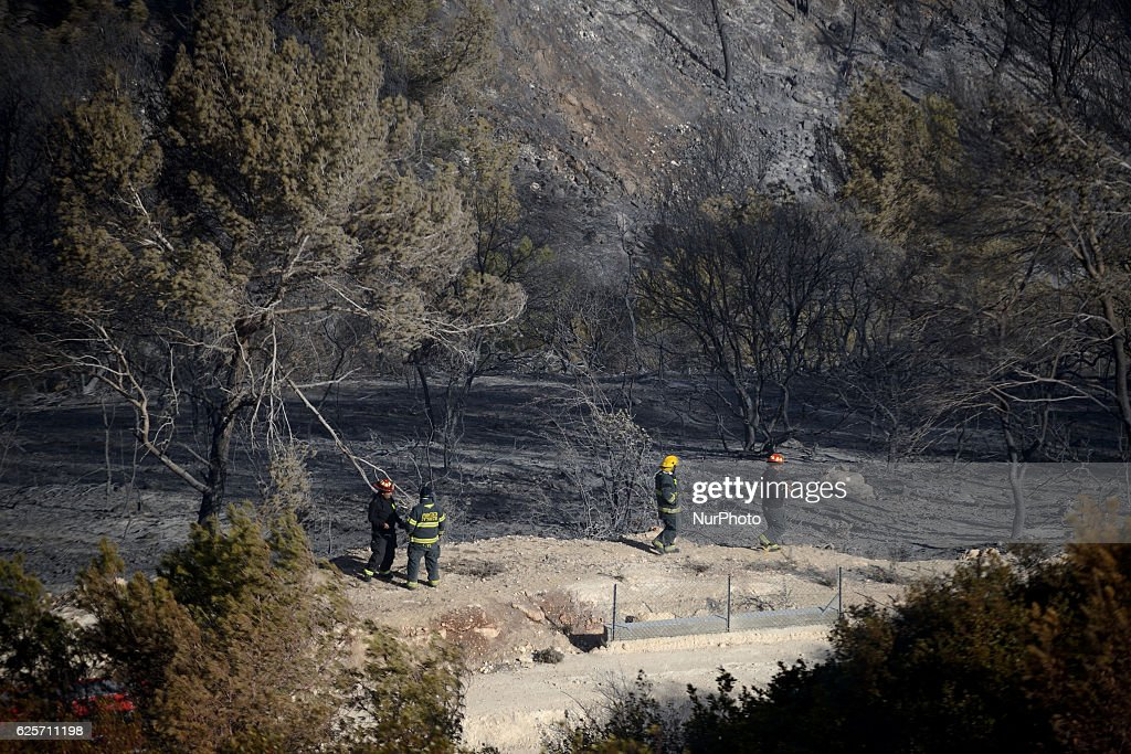 Israeli firefighters inspect a burnt forest hit by a massive forest fire in The Northern city of Haifa, Israel on November 25, 2016. The massive fire in the city of Haifa lead to the evacuation of dozens of thousands of city residents and is part of a lrage wave of forest fires errupted all over Israel during the last days.