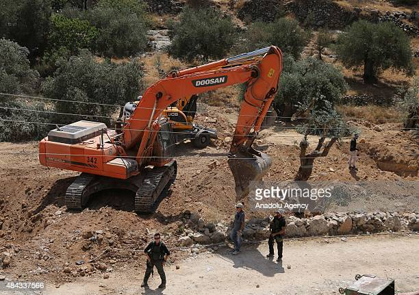 Israeli forces stand guard when Israeli authorities uproot olive trees to build the separation wall in Bethlehem West Bank on August 17 2015