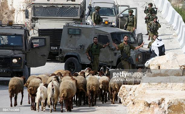 Israeli soldiers prevent a Palestinian man his donkey from leaving the northern West Bank village of Madama on August 24 2016 during searches...