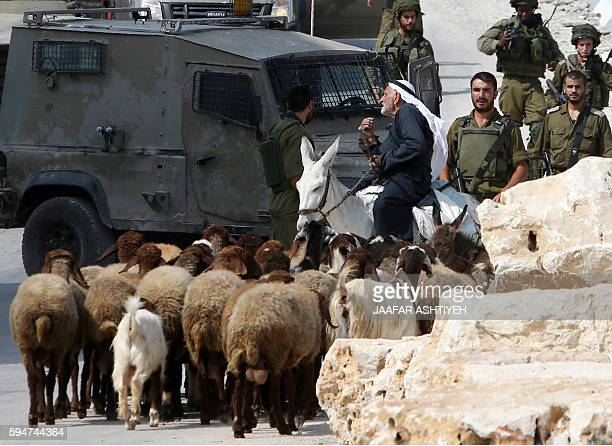 Israeli soldiers prevent a Palestinian man on his donkey from leaving the northern West Bank village of Madama on August 24 2016 during searches...