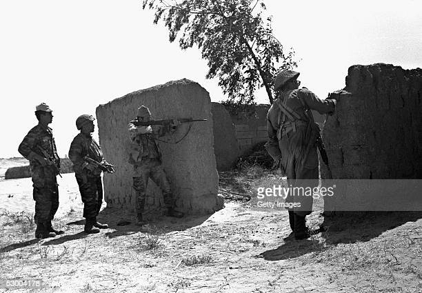 Israeli soldiers rounding up Egyptian troops on the second day of fighting of the SixDay War on June 6 1967 in the southern Gaza Strip town of Rafah...