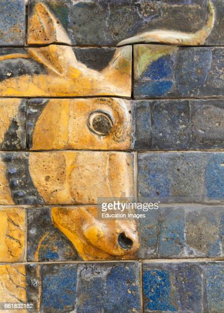 Istanbul Turkey Archeological Museum Glazed brick bull in relief from the Ishtar Gate Babylon dating from the Nebuchadnezzar II period circa 604562 BC
