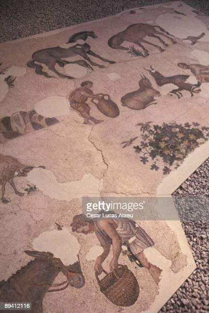 Istanbul Turkey Museum of Mosaico