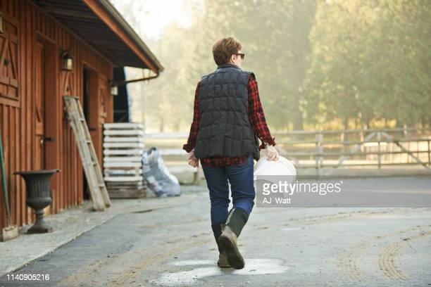 it takes hard work to run a farm - daily bucket stock pictures, royalty-free photos & images