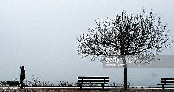 It was a colorless afternoon as snow fell from grey skies onto bare trees as a pedestrian walks a dog on Day Boulevard next to the beach in South...