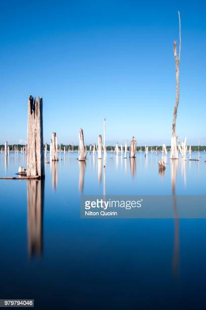 itaipu lake - paraguay stock photos and pictures