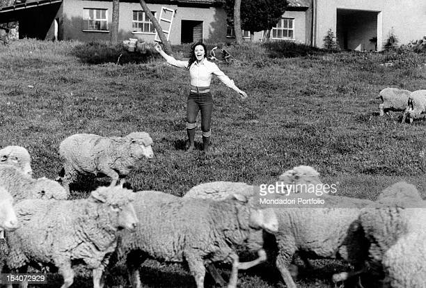 Italian actress Agostina Belli shouting and throwing open her arms towards a flock of sheep Rome 1973