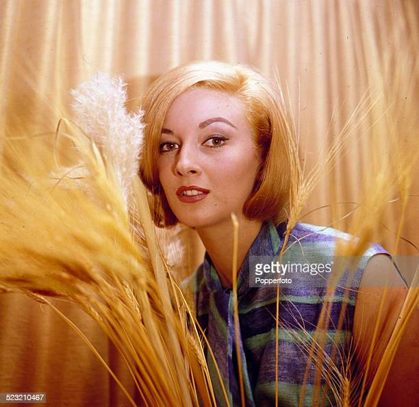 Italian actress Daniela Bianchi who plays Tatiana Romanova in the James Bond film From Russia With Love posed at home behind a display of dried...
