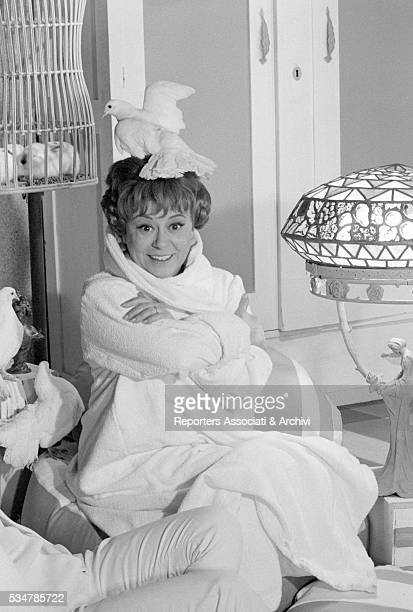 Italian actress Giulietta Masina with a white dove on her head on the set of the film Don't Sting the Mosquito 1967