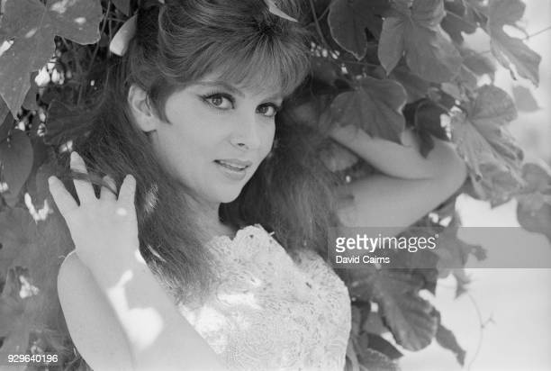 Italian actress photojournalist and sculptor Gina Lollobrigida UK 4th August 1968