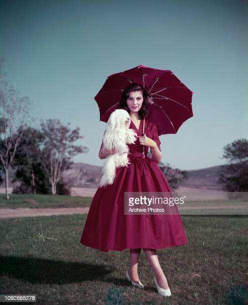 Italian actress Pier Angeli wearing a red dress and matching parasol and holding a small white dog circa 1955