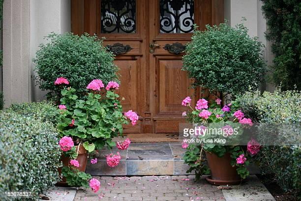 Italian antique doors