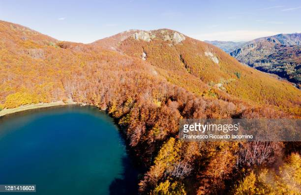 italian apennines, autumn foliage in beech tree forest near modena, italy - モデナ ストックフォトと画像