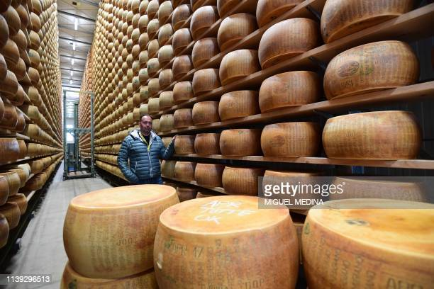 Italian cattle farmer Simone Minelli poses by Parmesan cheeses stored at his dairy farm on April 5 2019 in Motteggiana Minelli a cattle farmer whose...