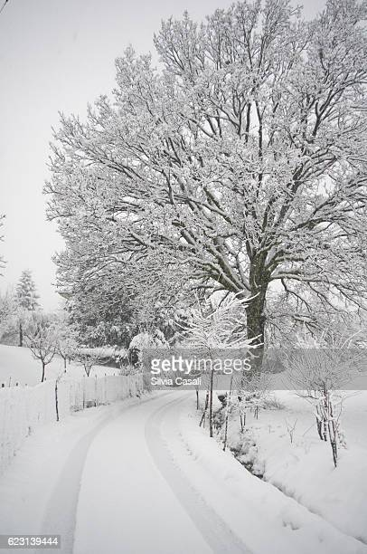 italian contryside panorama with snow - silvia casali stock pictures, royalty-free photos & images