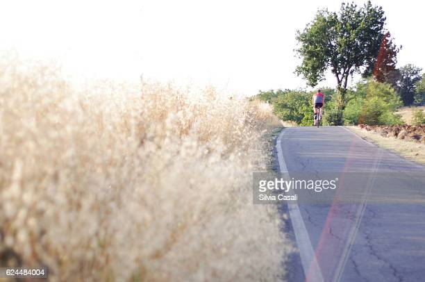 italian countryside at summertime - silvia casali stock pictures, royalty-free photos & images