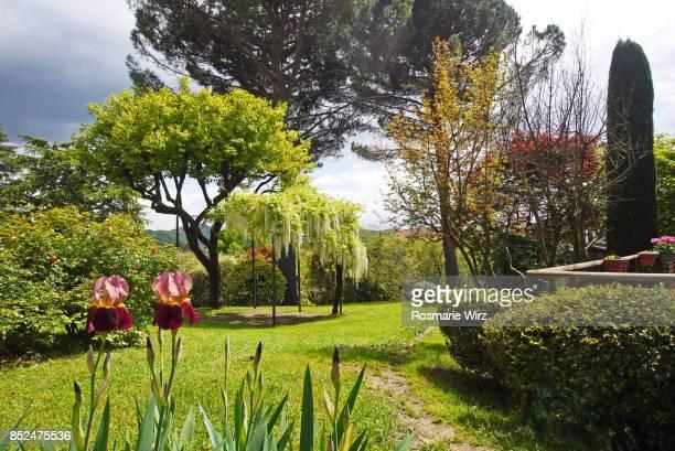 Italian garden, Lombardy, Italy.