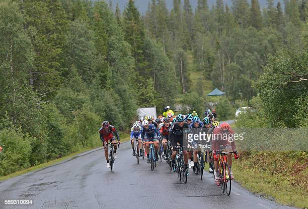 Italian Gianni Moscon from Team SKY controles the last kilometres of the third stage of the Arctic Race of Norway 2016 the 160km from Nesna to...