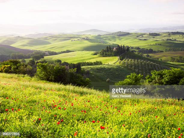 italian landscape in late spring - yeowell stock pictures, royalty-free photos & images