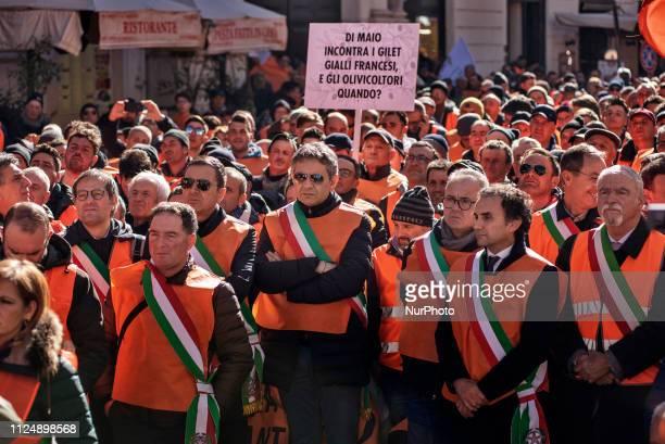 Italian mayors from Puglia Calabria Sicilia Campania Lazio Abruzzo Toscana regions wearing orange vests take parts in an olivegrowers protest in Rome...