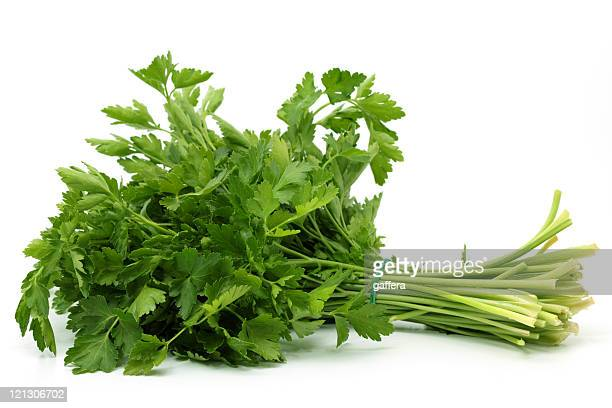 italian parsley - flat leaf parsley stock pictures, royalty-free photos & images