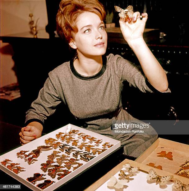 Italian presenter Aba Cercato takes a sample from his brother's rich collection of butterflies and looks it with curiosity she joined RAI in 1959 as...
