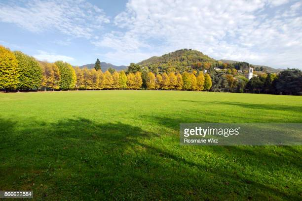 Italian public park with large open space lined by lime trees (tilia)
