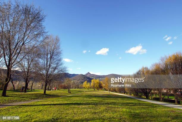 italian public park with large open space lined by trees - kahler baum stock-fotos und bilder