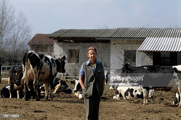 Italian publisher Giulia Maria Crespi is in her farm called Zelata among the cows descended from a famous family that owned Corriere della Sera in...