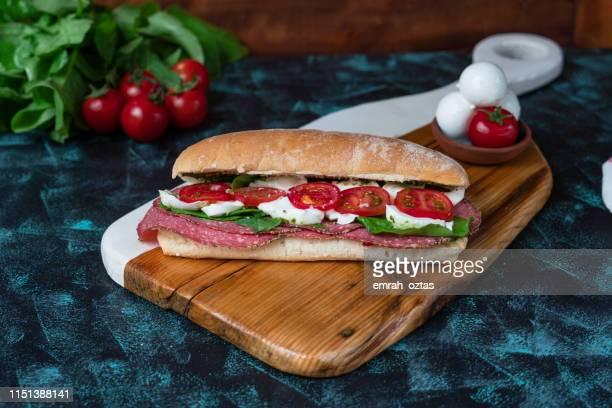 italiaanse salami sandwich - brie stockfoto's en -beelden