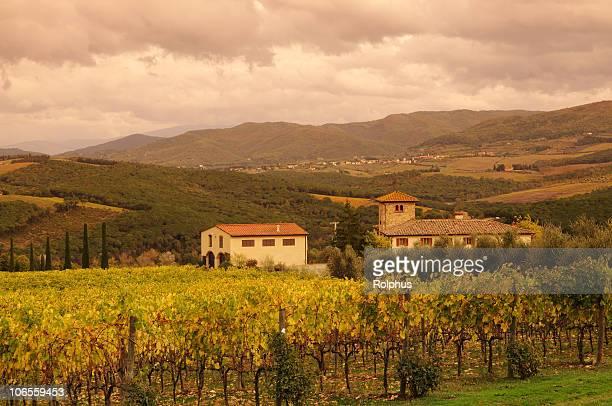 Der italienischen Toskana Kultur Chianti Weinberge Herbst