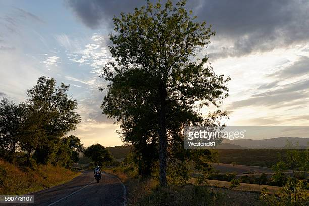 Italian, Tuscany, Province Grosseto, near Saturnia, country road in the evening