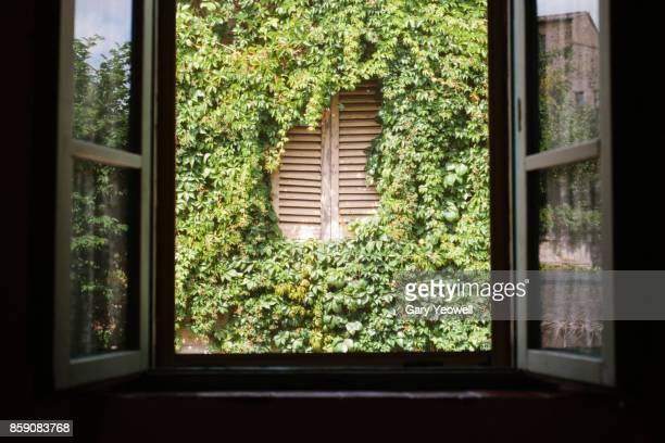 italian window view - fensterladen stock-fotos und bilder