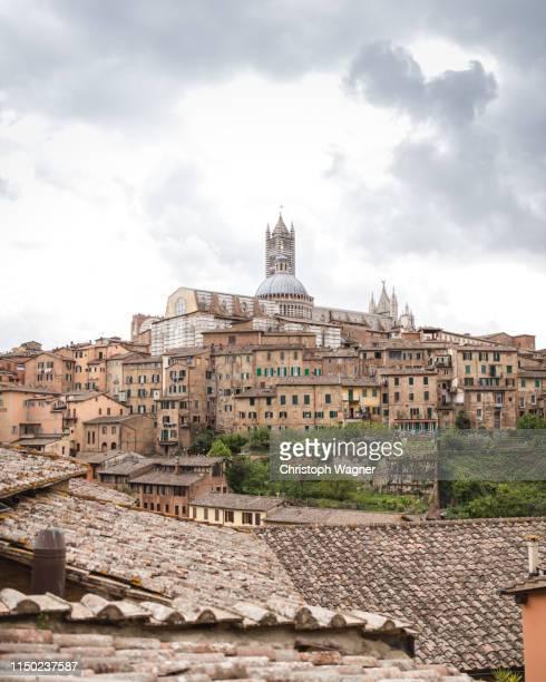 italien - siena, toskana - italien stock pictures, royalty-free photos & images