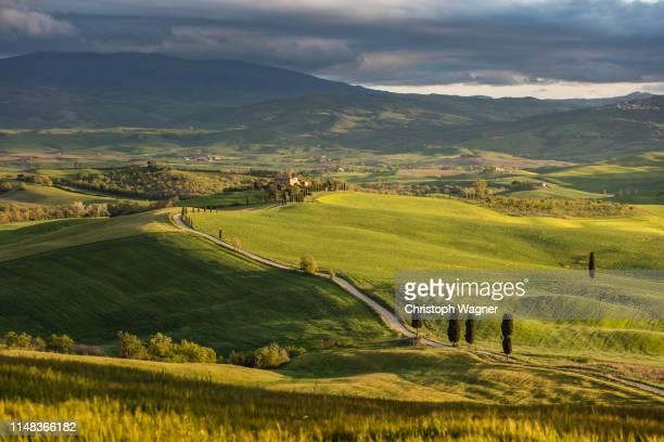 italien - toskana - italien stock pictures, royalty-free photos & images