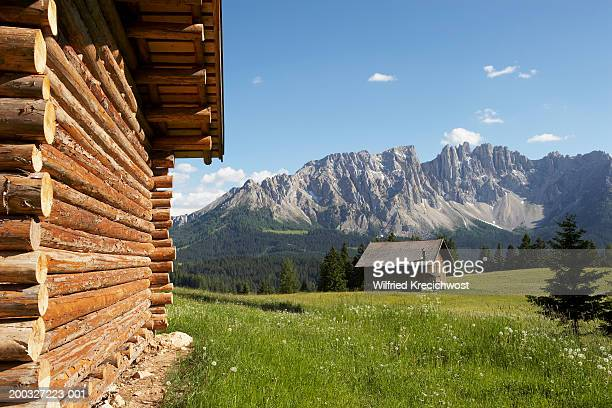 Italy, Alto Adige, Dolomites, Latemar, cabins in meadow